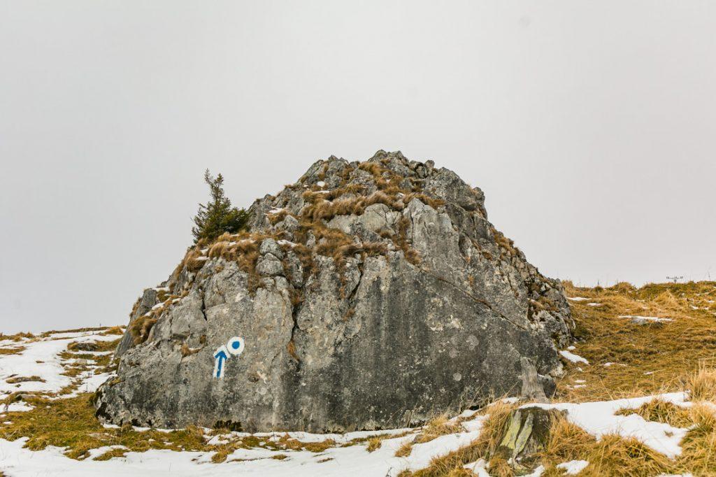 Mannequin challenge Rarău - Întâlniri