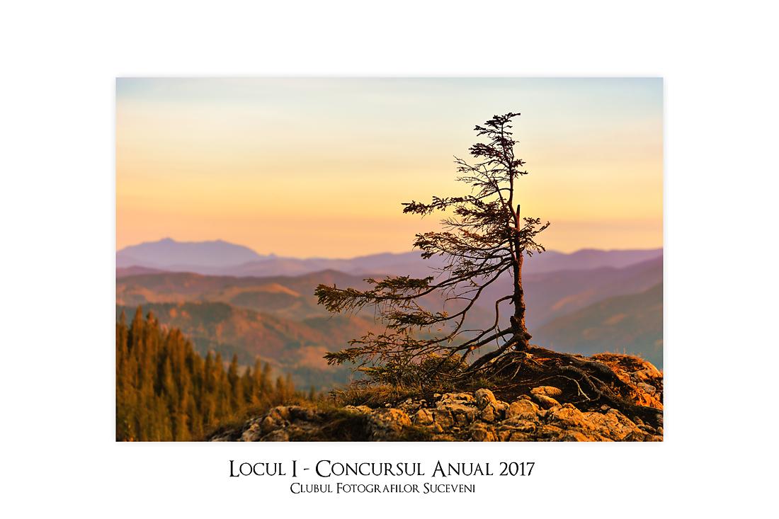 Întâlnirea Fotografilor Suceveni #19 - Concursul anual 2017 - Întâlniri